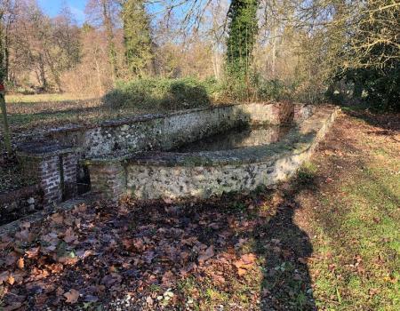 Taille, nettoyage, remise en état d'un bassin sur le secteur Louviers, Evreux